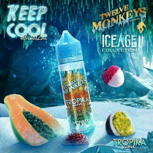 Twelve Monkeys - Tropika Iced