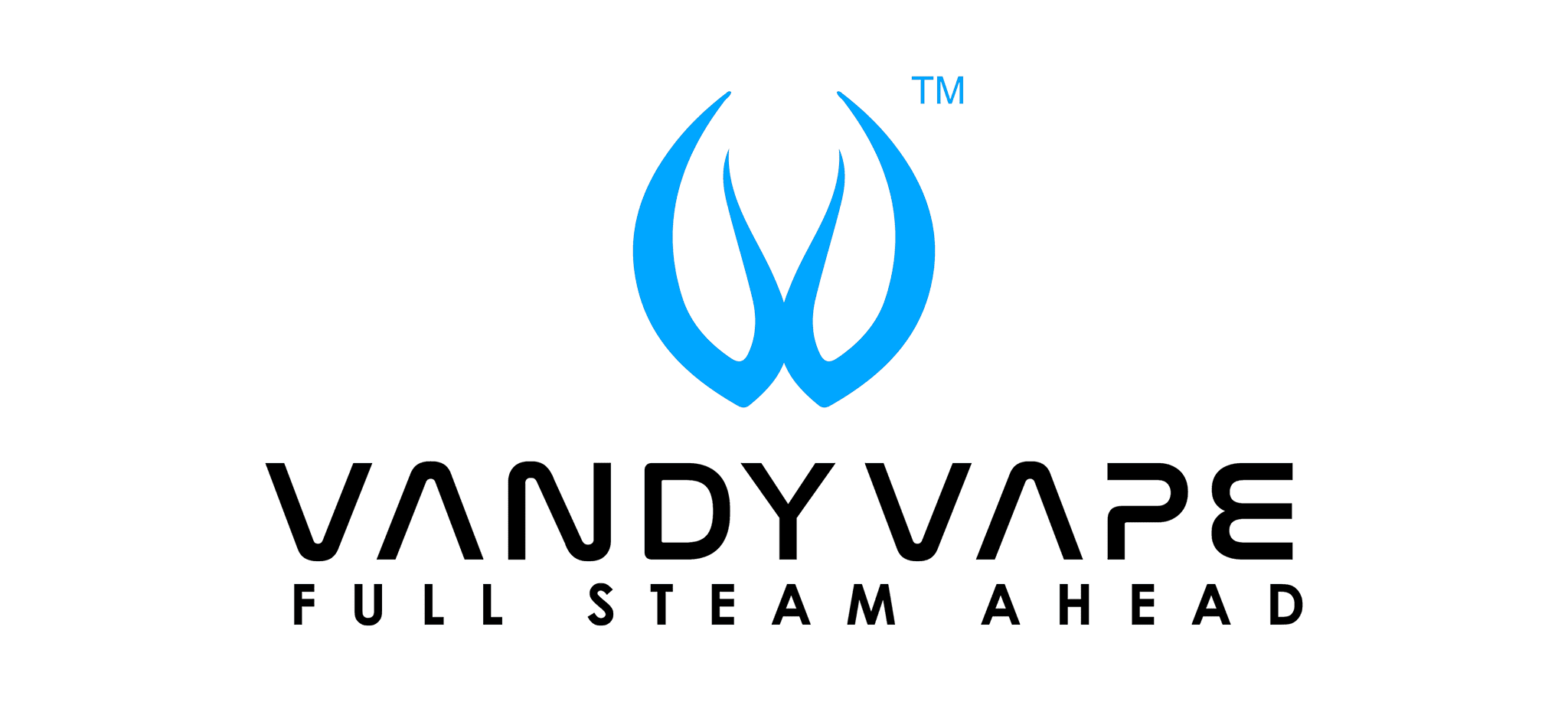 Vandy Vape Verdampfer